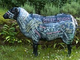 Una ovella personalitzada