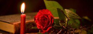 Màrius Serra: La novel·la de Sant Jordi