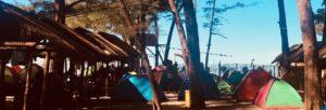 Roberto Bolaño: La pista de hielo - Camping