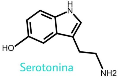 Michel Houellebecq: Serotonina
